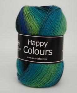 Garntorget Svarta Fåret Happy Colour Grön/blå Multi 04